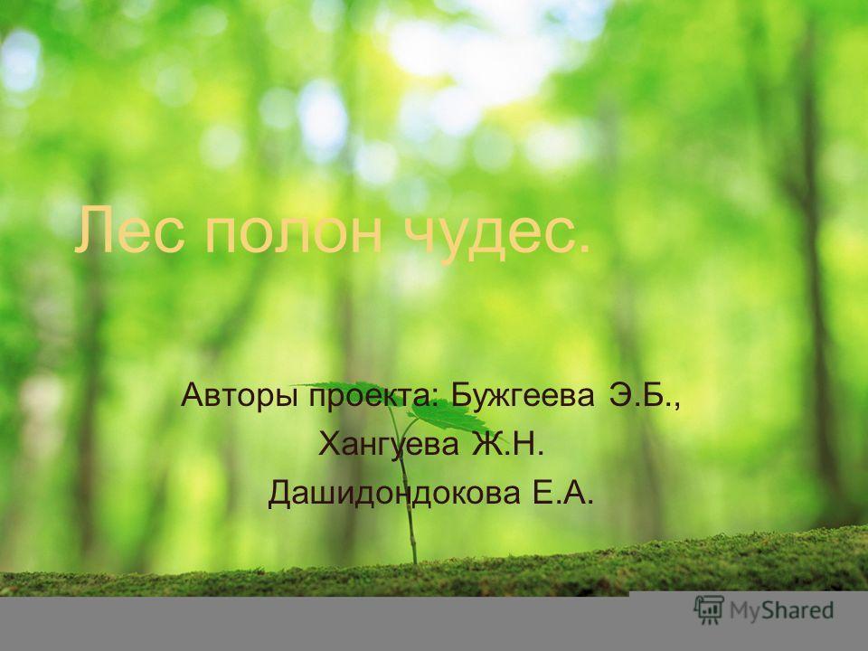Лес полон чудес. Авторы проекта: Бужгеева Э.Б., Хангуева Ж.Н. Дашидондокова Е.А.