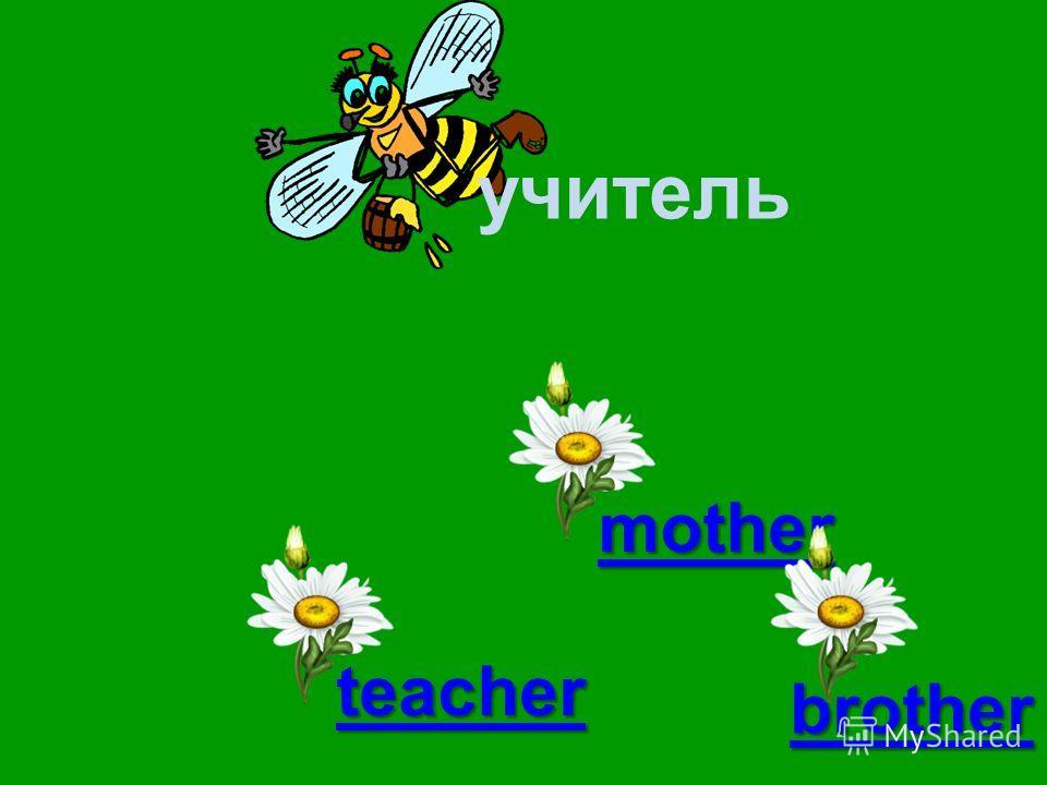 учитель mouse teacher mother brother