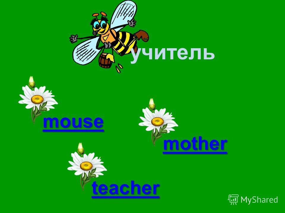 учитель mouse teacher brother