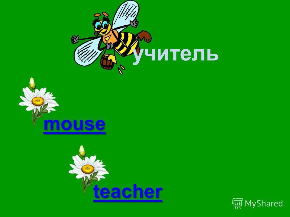 учитель teacher mother