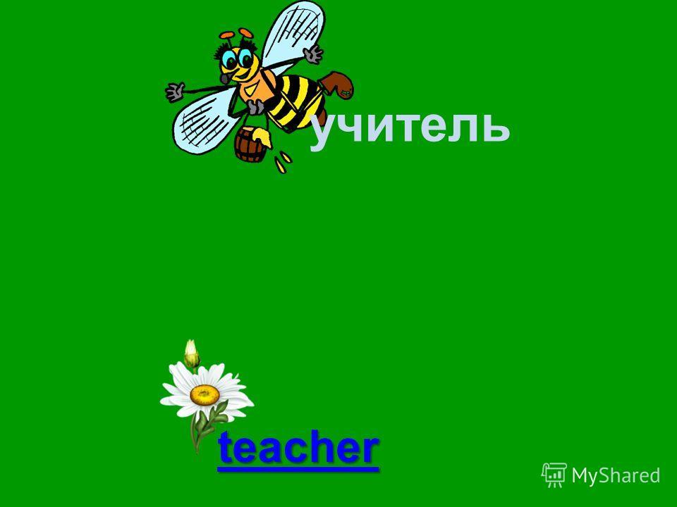 учитель mouse teacher