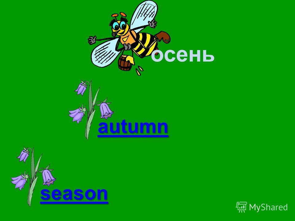 осень autumn season weather