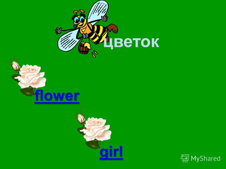 цветок flower