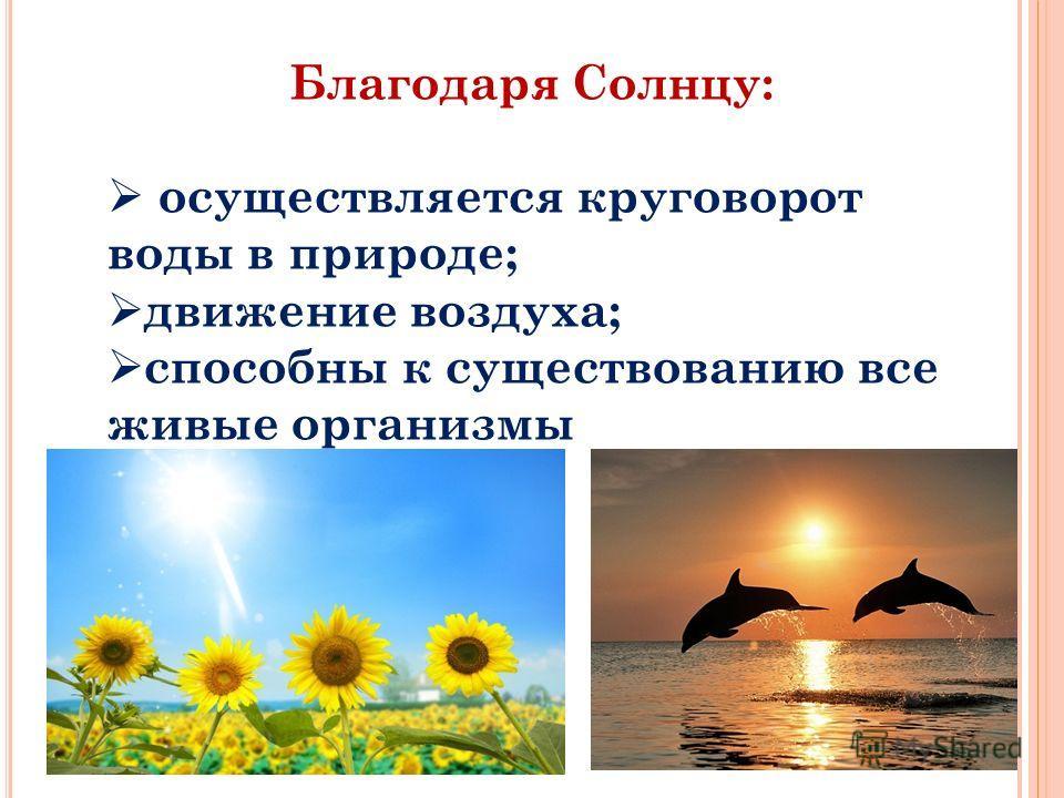 12 Благодаря Солнцу: осуществляется круговорот воды в природе; движение воздуха; способны к существованию все живые организмы