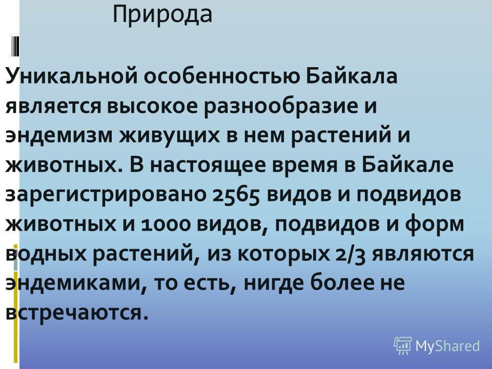 Природа Уникальной особенностью Байкала является высокое разнообразие и эндемизм живущих в нем растений и животных. В настоящее время в Байкале зарегистрировано 2565 видов и подвидов животных и 1000 видов, подвидов и форм водных растений, из которых