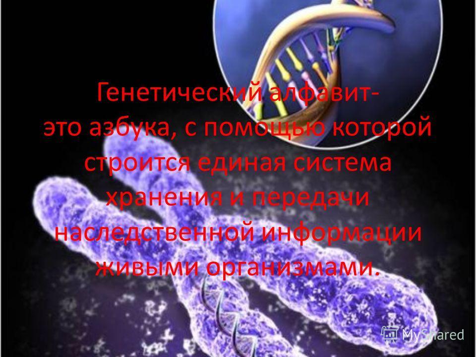 Генетический алфавит- это азбука, с помощью которой строится единая система хранения и передачи наследственной информации живыми организмами.