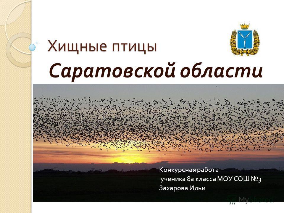 Хищные птицы Саратовской области Конкурсная работа ученика 8 а класса МОУ СОШ 3 Захарова Ильи