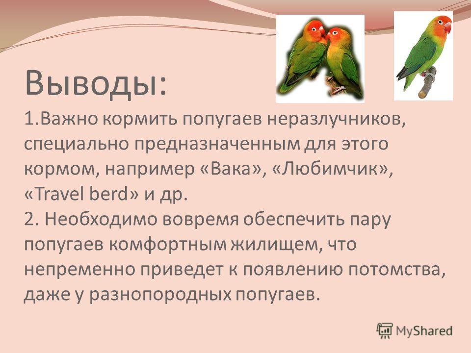 Выводы: 1.Важно кормить попугаев неразлучников, специально предназначенным для этого кормом, например «Вака», «Любимчик», «Travel berd» и др. 2. Необходимо вовремя обеспечить пару попугаев комфортным жилищем, что непременно приведет к появлению потом