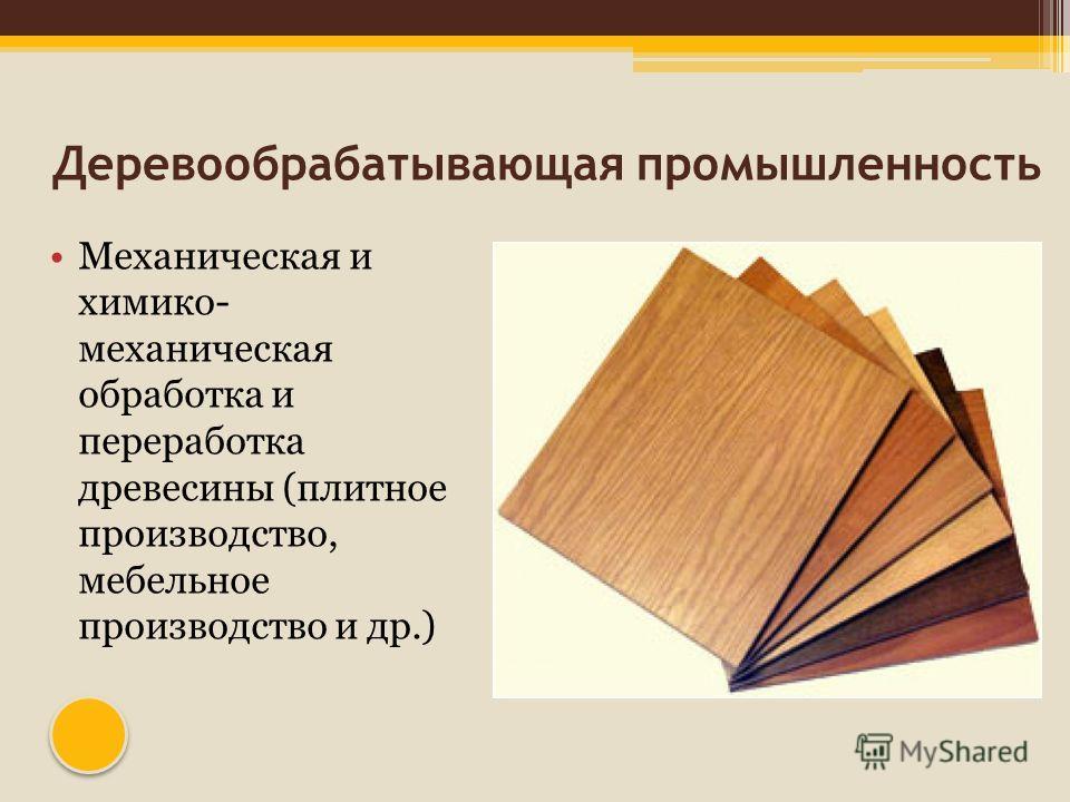 Деревообрабатывающая промышленность Механическая и химико- механическая обработка и переработка древесины (плитное производство, мебельное производство и др.)