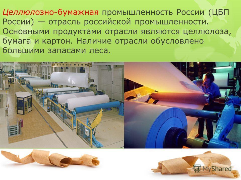 Целлюлозно-бумажная промышленность России (ЦБП России) отрасль российской промышленности. Основными продуктами отрасли являются целлюлоза, бумага и картон. Наличие отрасли обусловлено большими запасами леса.