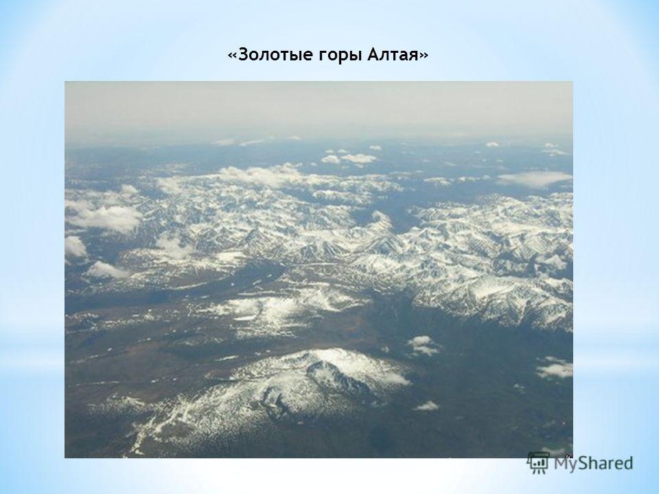 «Золотые горы Алтая»