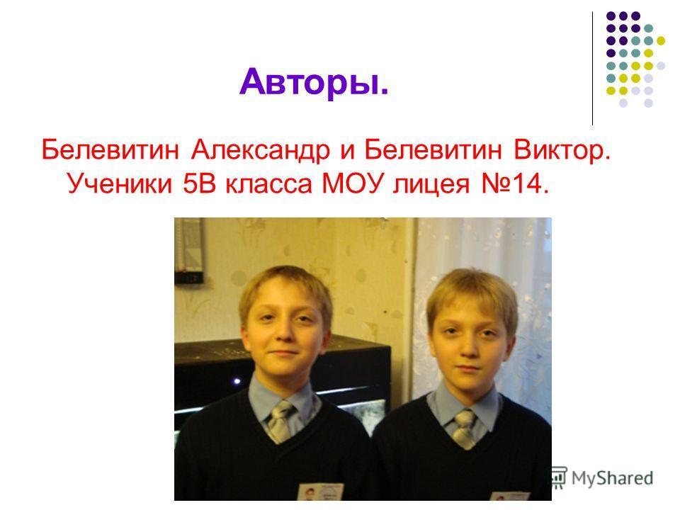 Авторы. Белевитин Александр и Белевитин Виктор. Ученики 5В класса МОУ лицея 14.