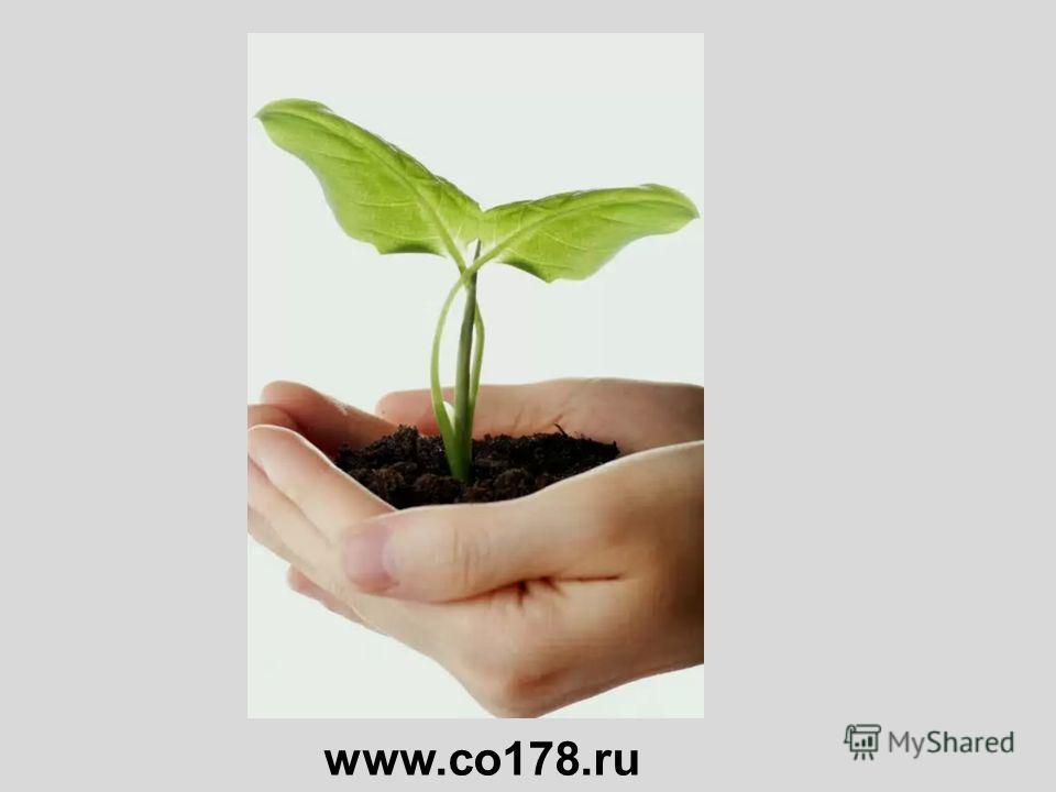 www.co178.ru
