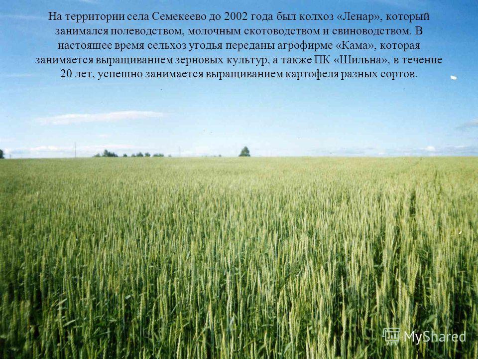 На территории села Семекеево до 2002 года был колхоз «Ленар», который занимался полеводством, молочным скотоводством и свиноводством. В настоящее время сельхоз угодья переданы агрофирме «Кама», которая занимается выращиванием зерновых культур, а такж