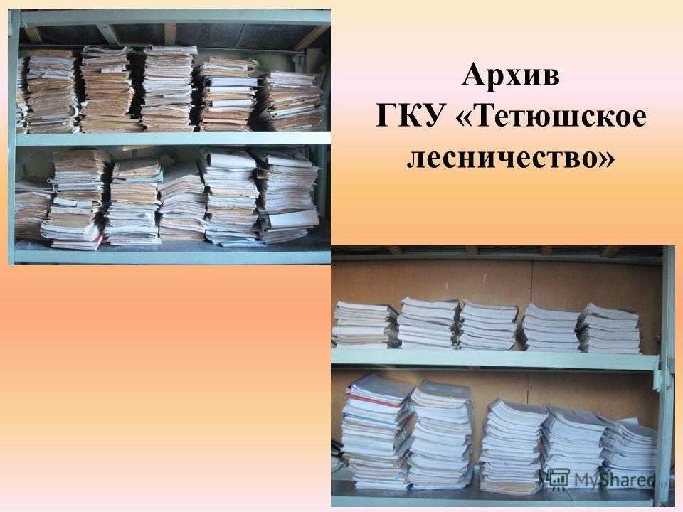 Архив ГКУ «Тетюшское лесничество»