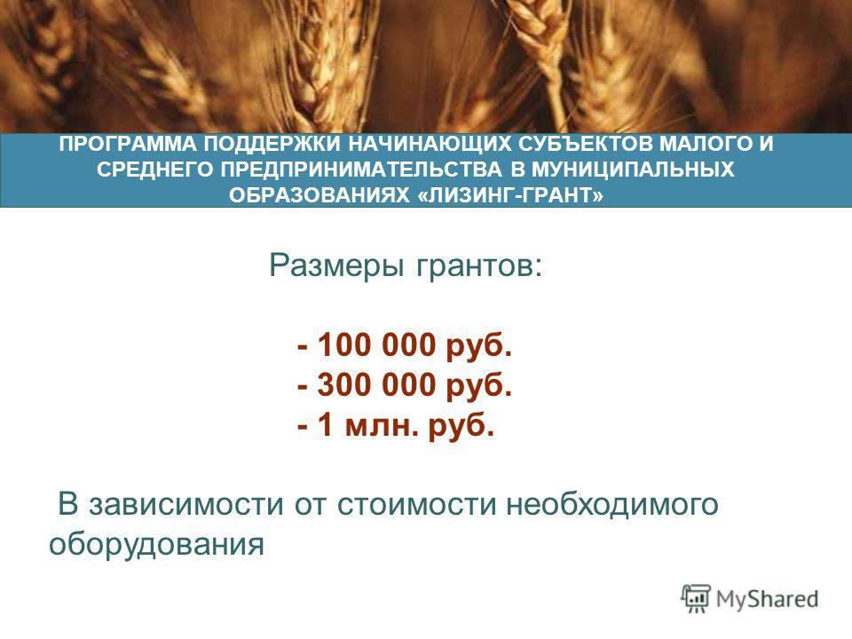 Ленточная пилорама «Тайга РМ-240» ПРОГРАММА ПОДДЕРЖКИ НАЧИНАЮЩИХ СУБЪЕКТОВ МАЛОГО И СРЕДНЕГО ПРЕДПРИНИМАТЕЛЬСТВА В МУНИЦИПАЛЬНЫХ ОБРАЗОВАНИЯХ «ЛИЗИНГ-ГРАНТ» Размеры грантов: - 100 000 руб. - 300 000 руб. - 1 млн. руб. В зависимости от стоимости необх