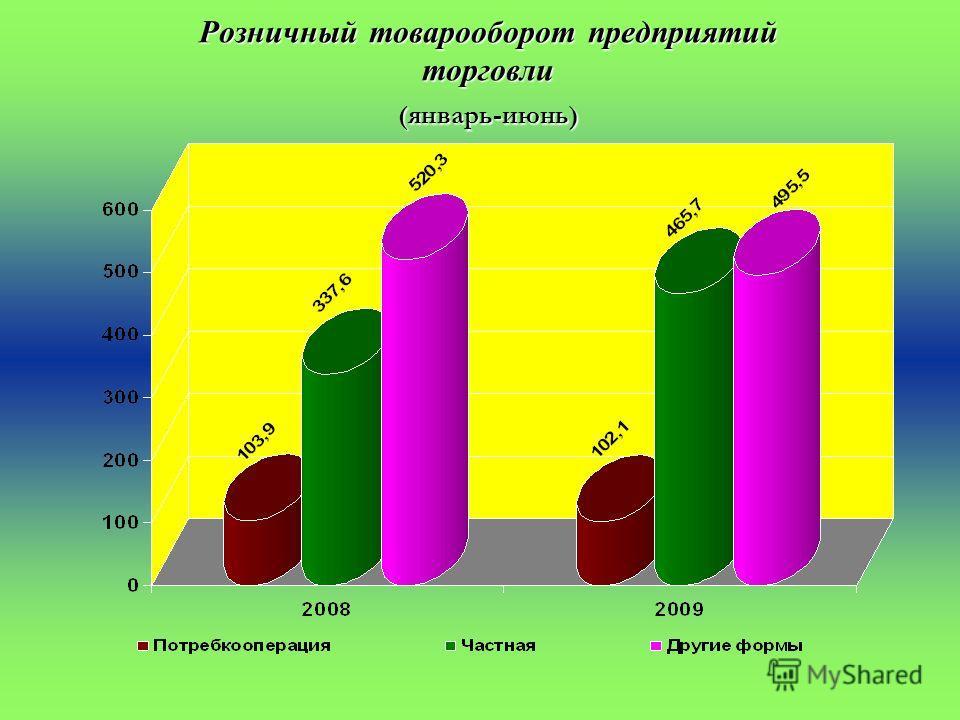 Розничный товарооборот предприятий торговли (январь-июнь) (тыс. рублей)