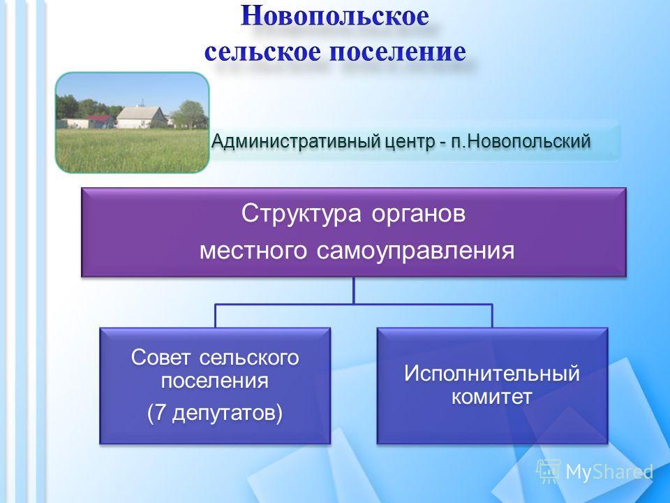 Структура органов местного самоуправления Совет сельского поселения (7 депутатов) Исполнительный комитет