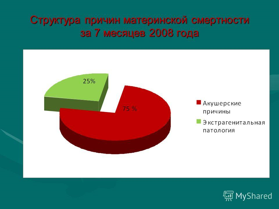 Структура причин материнской смертности за 7 месяцев 2008 года