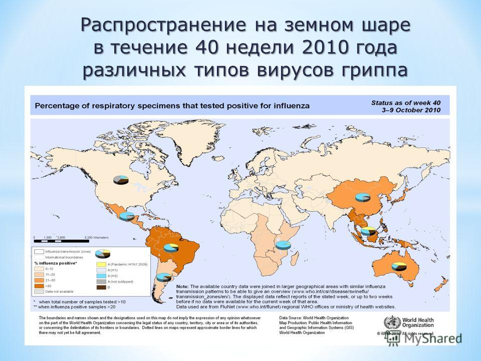Распространение на земном шаре в течение 40 недели 2010 года различных типов вирусов гриппа