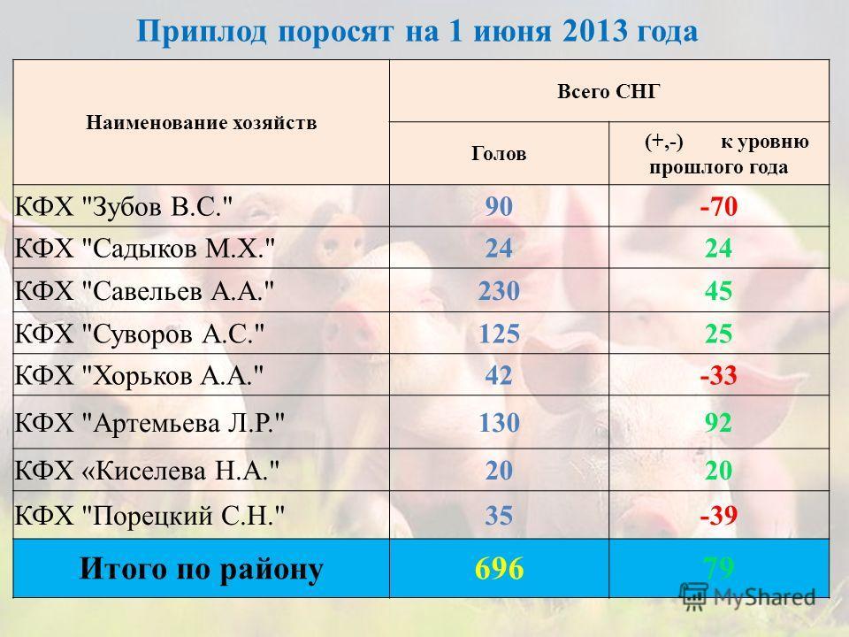 Приплод поросят на 1 июня 2013 года Наименование хозяйств Всего СНГ Голов (+,-) к уровню прошлого года КФХ