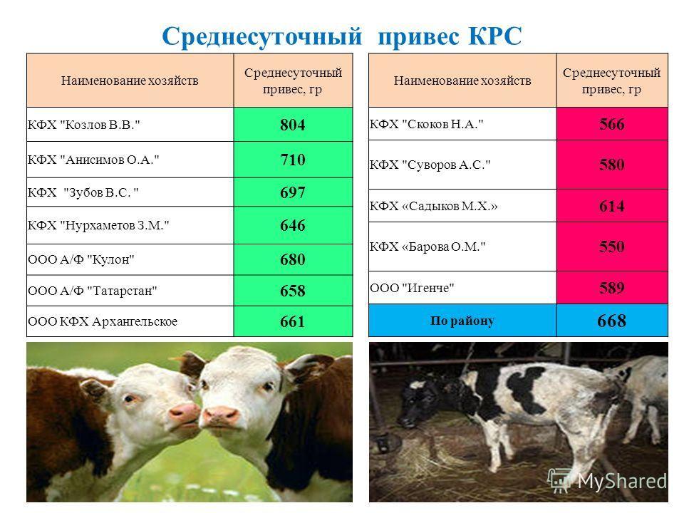 Среднесуточный привес КРС Наименование хозяйств Среднесуточный привес, гр КФХ