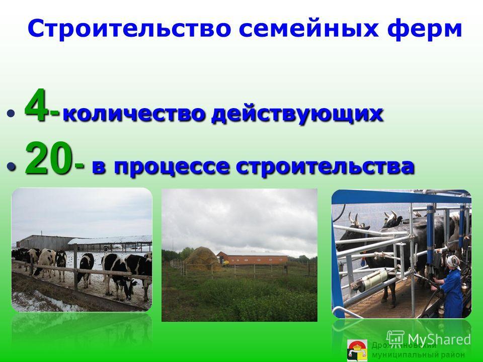 Строительство семейных ферм 4 - количество действующих 20 - в процессе строительства 20 - в процессе строительства