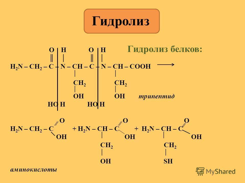 Гидролиз белков: O H O H H 2 N – CH 2 – C – N – CH – C – N – CH – COOH CH 2 CH 2 OH OH трипептид HO H HO H O O O H 2 N – CH 2 – C + H 2 N – CH – C + H 2 N – CH – C OH OH OH CH 2 CH 2 OH SH аминокислоты Гидролиз