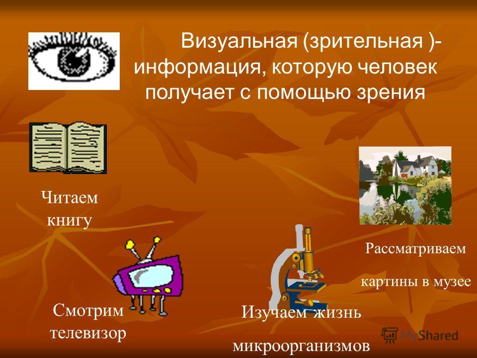 Визуальная (зрительная )- информация, которую человек получает с помощью зрения Читаем книгу Смотрим телевизор Рассматриваем картины в музее Изучаем жизнь микроорганизмов