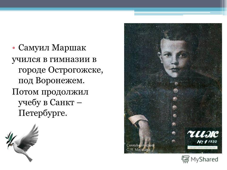Самуил Маршак учился в гимназии в городе Острогожске, под Воронежем. Потом продолжил учебу в Санкт – Петербурге.