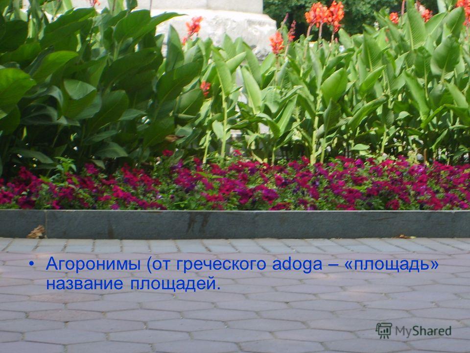 Агоронимы (от греческого adoga – «площадь» название площадей.