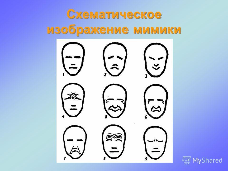 Схематическое изображение мимики