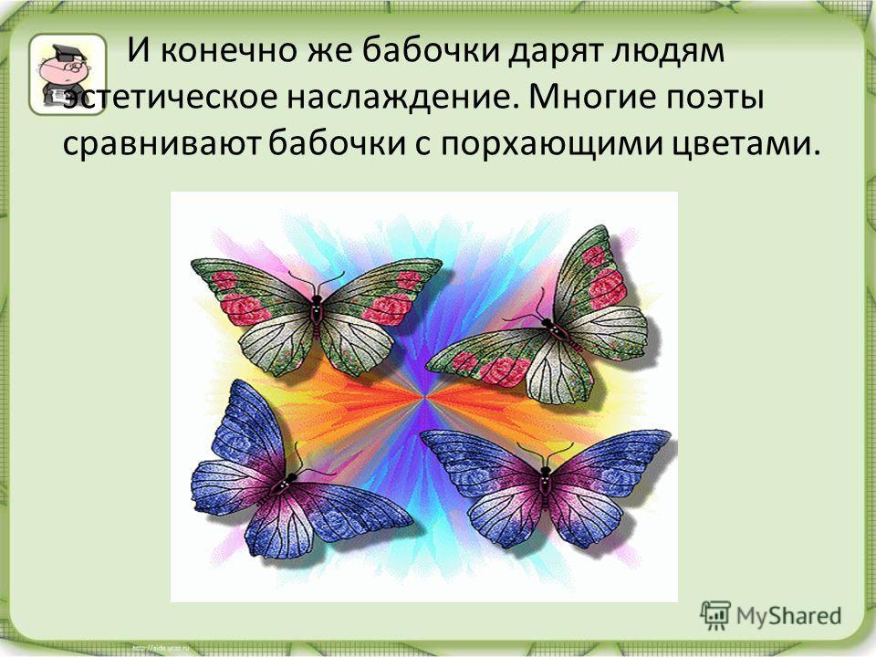 И конечно же бабочки дарят людям эстетическое наслаждение. Многие поэты сравнивают бабочки с порхающими цветами.