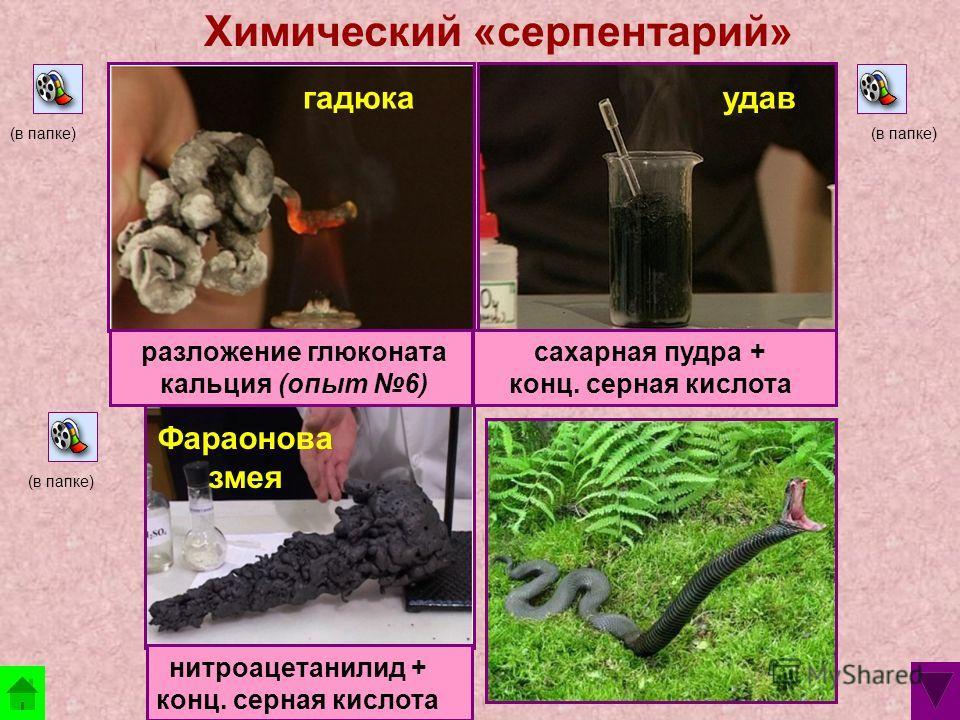 Химический «серпентарий» гадюка Фараонова змея удав (в папке) разложение глюконата кальция (опыт 6) сахарная пудра + конц. серная кислота нитроацетанилид + конц. серная кислота