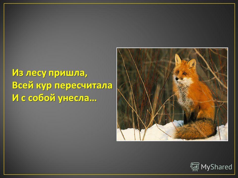 Из лесу пришла, Всей кур пересчитала И с собой унесла …