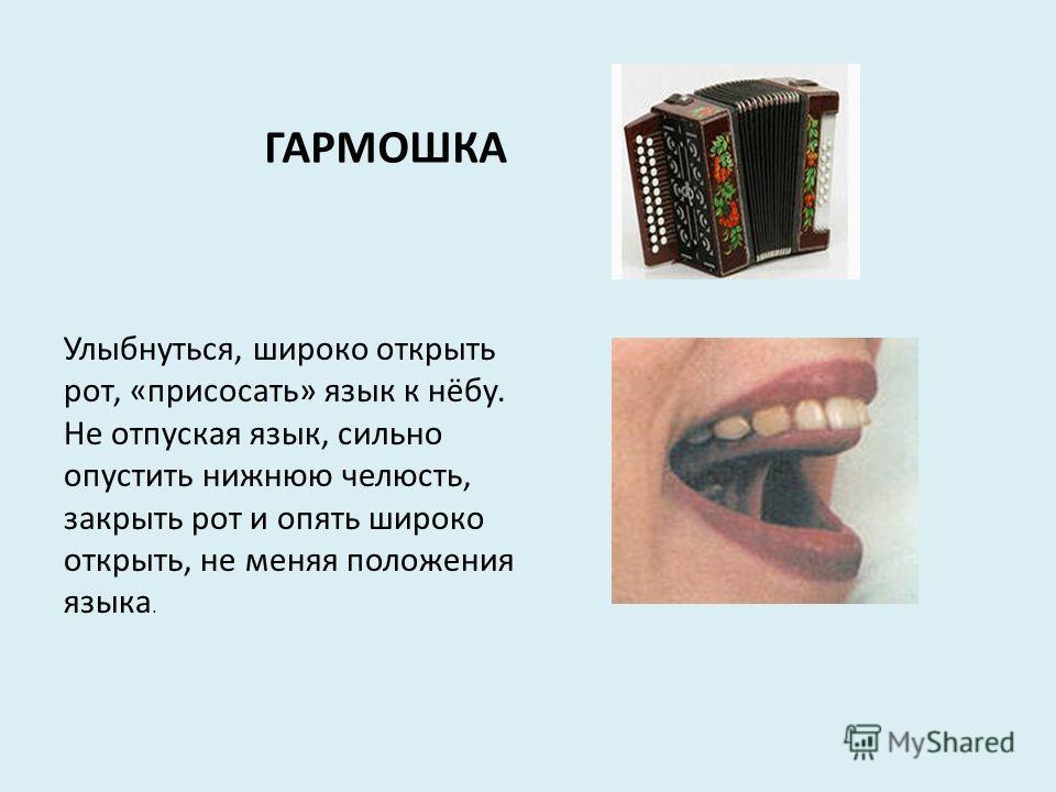 ГАРМОШКА Улыбнуться, широко открыть рот, «присосать» язык к нёбу. Не отпуская язык, сильно опустить нижнюю челюсть, закрыть рот и опять широко открыть, не меняя положения языка.