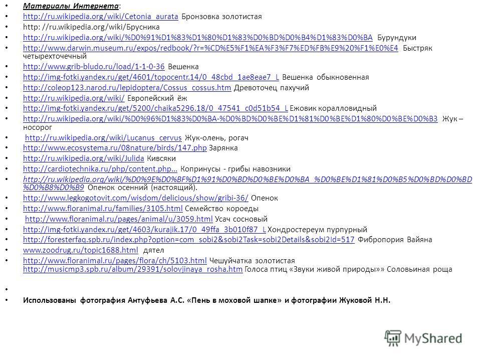 Материалы Интернета: http://ru.wikipedia.org/wiki/Cetonia_aurata Бронзовка золотистая http://ru.wikipedia.org/wiki/Cetonia_aurata http: //ru.wikipedia.org/wiki/Брусника http://ru.wikipedia.org/wiki/%D0%91%D1%83%D1%80%D1%83%D0%BD%D0%B4%D1%83%D0%BA Бур