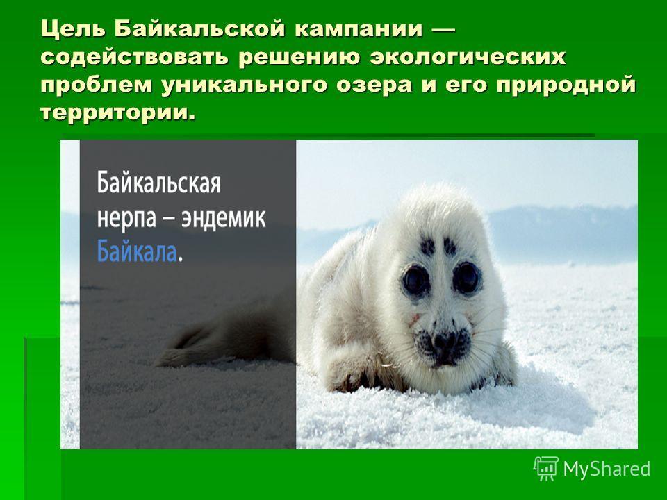 Цель Байкальской кампании содействовать решению экологических проблем уникального озера и его природной территории.