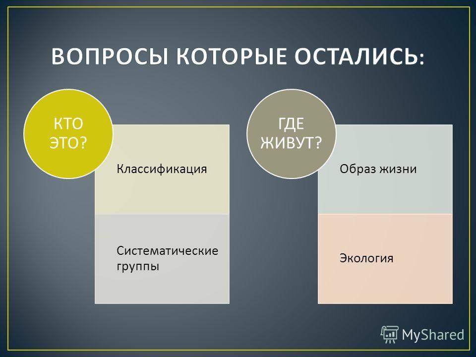Классификация Систематические группы КТО ЭТО ? Образ жизни Экология ГДЕ ЖИВУТ ?