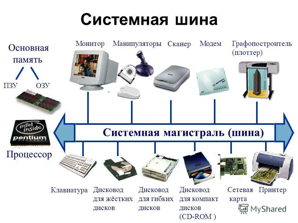 Системная шина Системная магистраль (шина) Основная память МониторМанипуляторыМодем Сканер Графопостроитель (плоттер) ОЗУПЗУ Клавиатура Процессор Дисковод для жёстких дисков Дисковод для гибких дисков Дисковод для компакт дисков (CD-ROM ) Сетевая кар