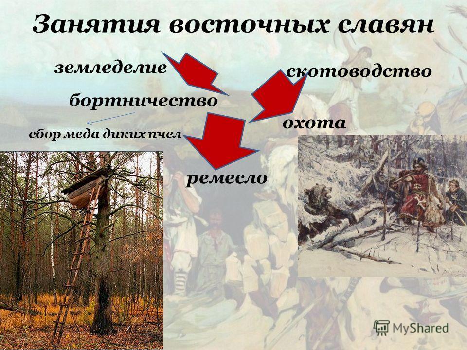 Занятия восточных славян земледелие скотоводство бортничество сбор меда диких пчел охота ремесло