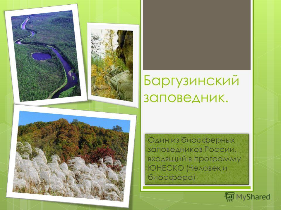Баргузинский заповедник. Один из биосферных заповедников России, входящий в программу ЮНЕСКО (Человек и биосфера)
