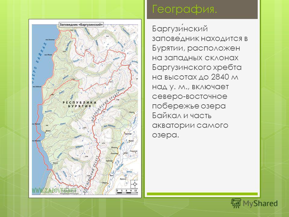 География. Баргузинский заповедник находится в Бурятии, расположен на западных склонах Баргузинского хребта на высотах до 2840 м над у. м., включает северо-восточное побережье озера Байкал и часть акватории самого озера.