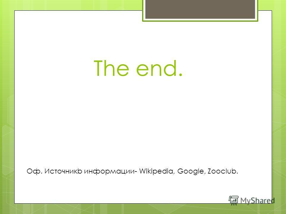 The end. Оф. Источникb информации- Wikipedia, Google, Zooclub.