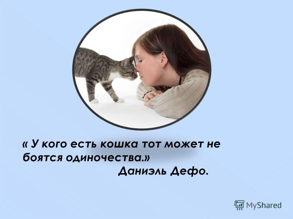 « У кого есть кошка тот может не боятся одиночества.» Даниэль Дефо.