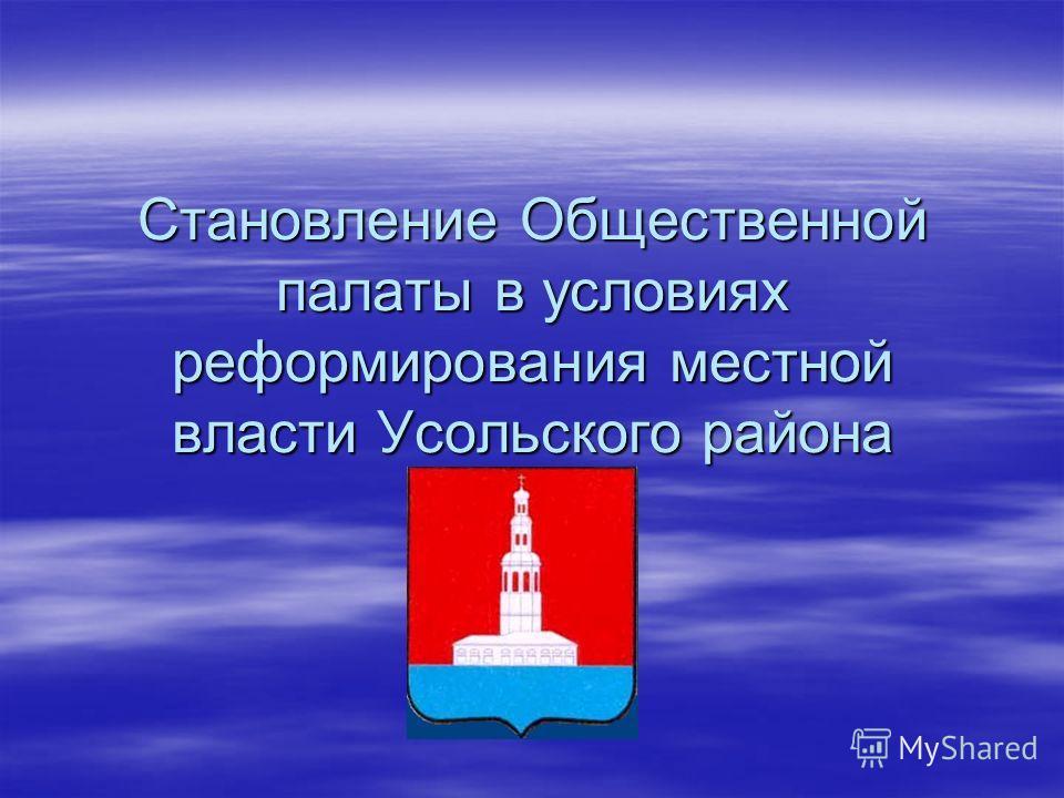 Становление Общественной палаты в условиях реформирования местной власти Усольского района