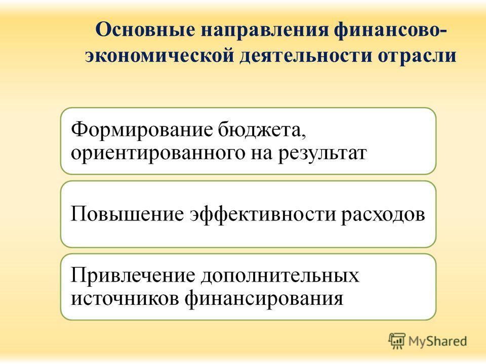 Основные направления финансово- экономической деятельности отрасли
