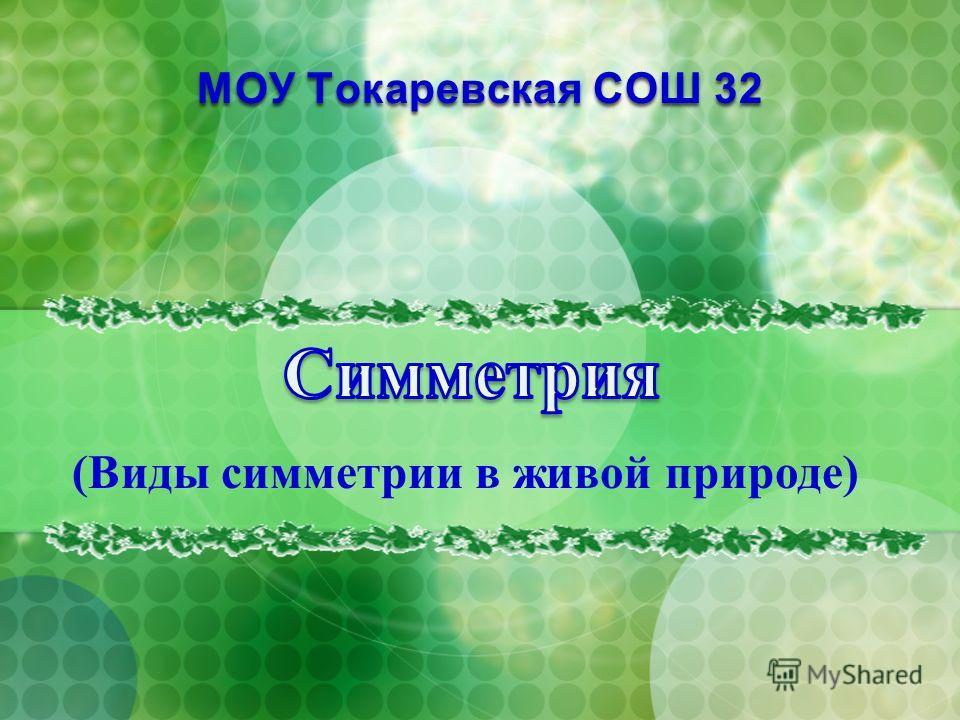 МОУ Токаревская СОШ 32