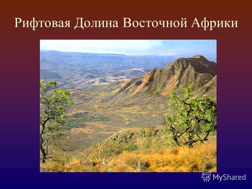 Рифтовая Долина Восточной Африки