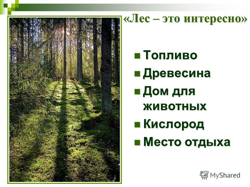 «Лес – это интересно» Топливо Топливо Древесина Древесина Дом для животных Дом для животных Кислород Кислород Место отдыха Место отдыха